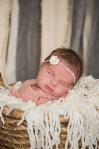 marshfield-newborn-portrait-photographer