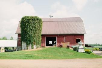 munson-bridge-winery-outdoor-wedding-in-wisconsin-photos-021