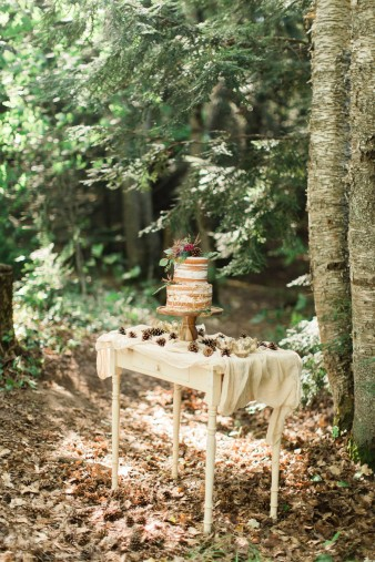 015-rustic-wisconsin-outdoor-woodsy-wedding-photos