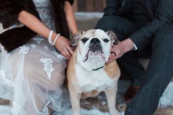 77-winter-wedding-with-dog